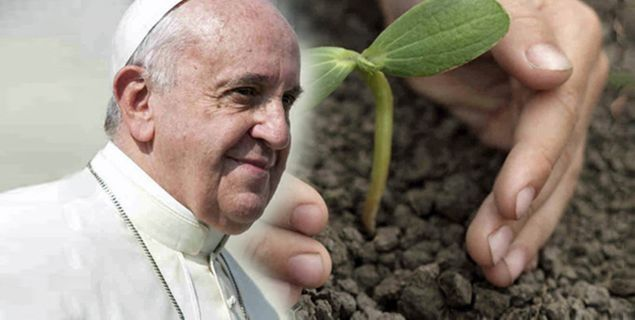 Papa celebrará Vésperas pelo Dia Mundial pelo Cuidado da Criação em 1/9