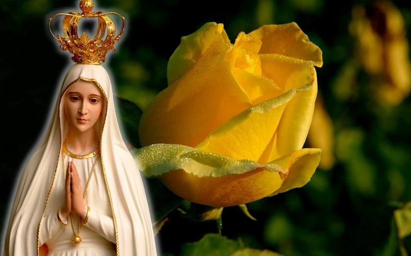 Mariologista destaca exemplo de Maria para o cuidado com a criação