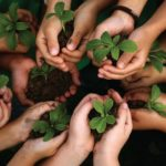 CF inserida no tempo da Quaresma convida à conversão ecológica