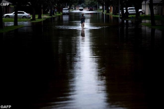 Papa expressa proximidade às vítimas do furacão Harvey