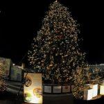 Presépio e árvore de Natal do Vaticano serão inaugurados em dezembro