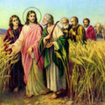 25º Domingo do Tempo Comum – Ano B – 23.09.18