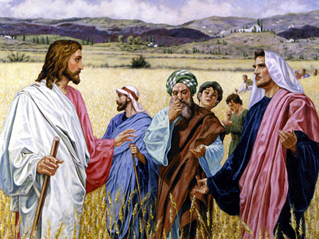 Reflexão Bíblica - 10º. Domingo Tempo Comum - Ano B - 10.06.2018