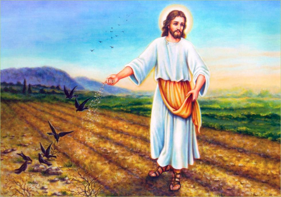 Reflexão Bíblica - 11º. Domingo Tempo Comum - Ano B - 17.06.2018