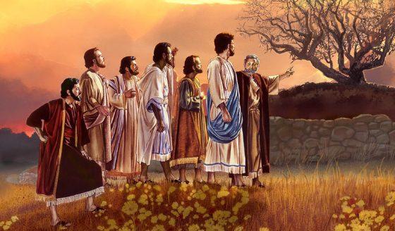 Reflexão bíblica - 3º domingo da Quaresma - 24.03.19