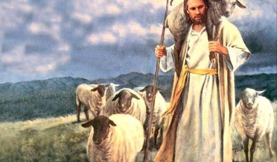 Reflexão Bíblica - 4º Domingo da Páscoa - 12.05.2019
