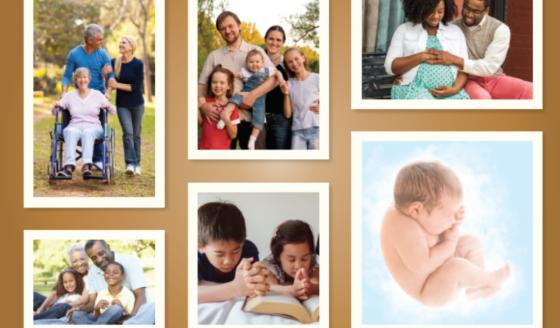 Semana da Vida 2019: Comissão propõe gestos para os dias 1º e 8 de outubro