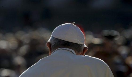 Papa: rever os critérios da vida para salvar a vida na Terra