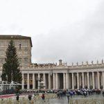 O Papa convida a buscar o sentido dos sinais de Natal